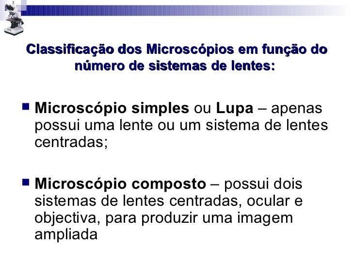 Microscopia Slide 3