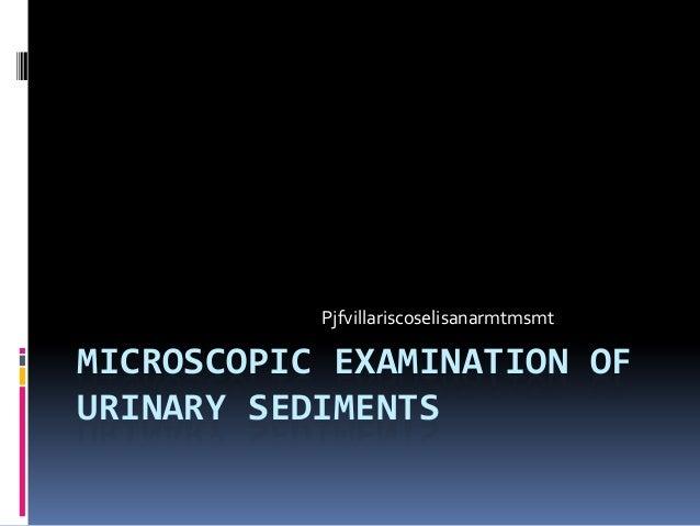 Ppt urine analysis powerpoint presentation, free download id.