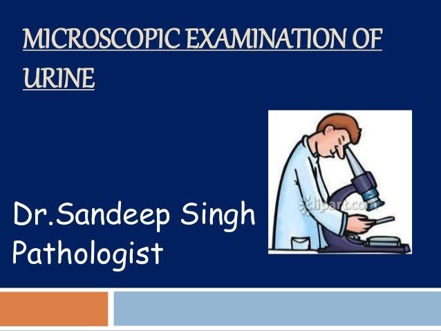 MICROSCOPIC EXAMINATION OF URINE Dr.Sandeep Singh Pathologist