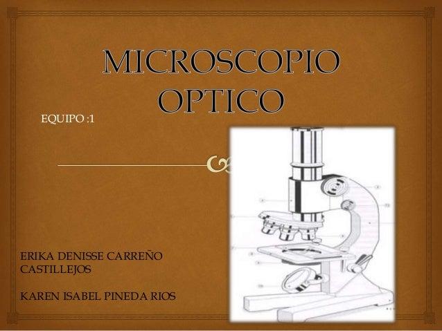 ERIKA DENISSE CARREÑO CASTILLEJOS KAREN ISABEL PINEDA RIOS EQUIPO :1