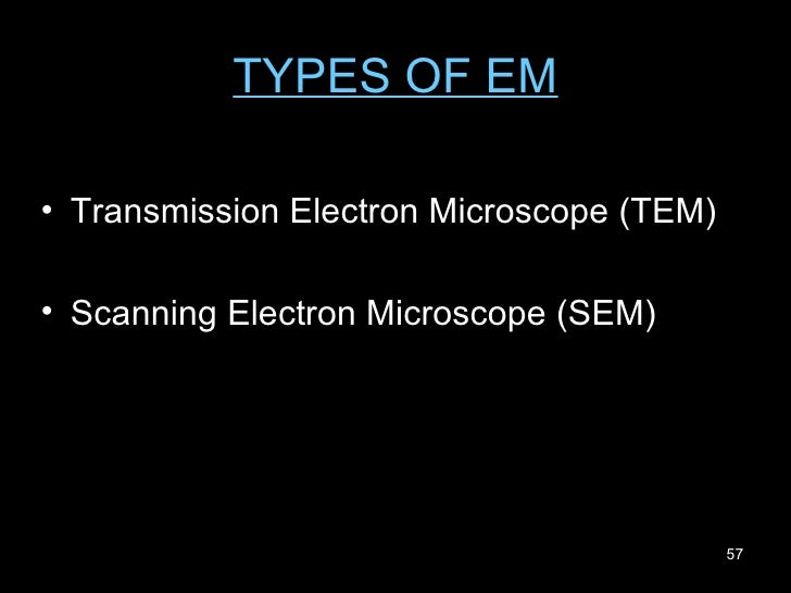 TYPES OF EM <ul><li>Transmission Electron Microscope (TEM) </li></ul><ul><li>Scanning Electron Microscope (SEM) </li></ul>