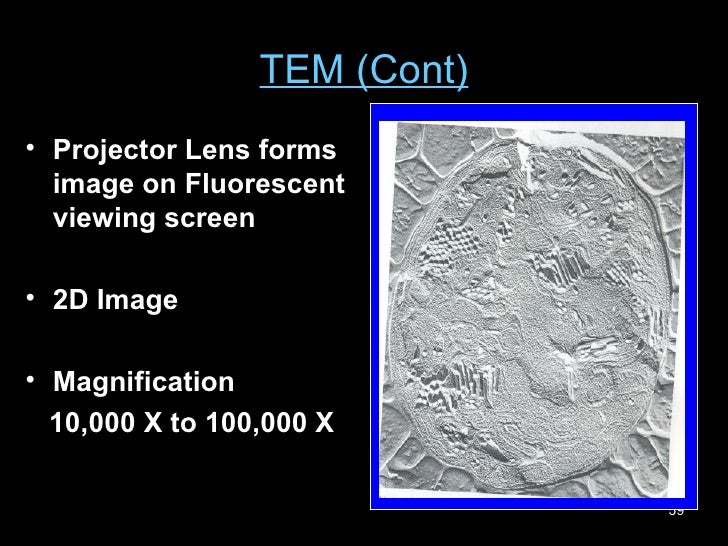TEM (Cont) <ul><li>Projector Lens forms image on Fluorescent viewing screen </li></ul><ul><li>2D Image </li></ul><ul><li>M...