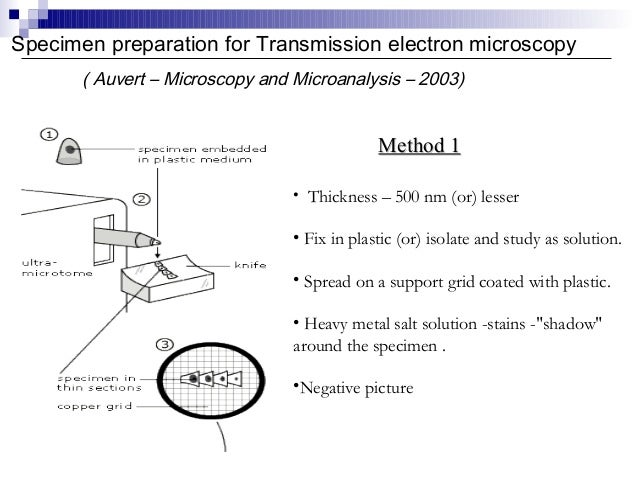 negative staining in transmission electron microscopy biology essay Electrons carry a negative charge and bombarding biological samples with negative charge can cause a build up transmission electron microscopy staining - electron dense stains are applied for contrast.