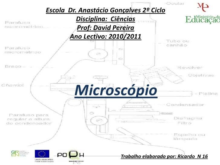 Escola Dr. Anastácio Gonçalves 2º Ciclo          Disciplina: Ciências          Prof: David Pereira       Ano Lectivo: 2010...