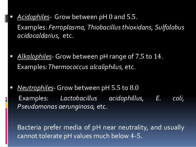 factors affecting the growth of bacteria Temperaturelow temperatures slow down while temperatures higher than 40 degrees c will denature the bacteria, an optimal temperature is needed for optimal growth as ecoli grows in the intestines its optimal temperature is about 37 degrees cphe coli can survive in stomach acid of.