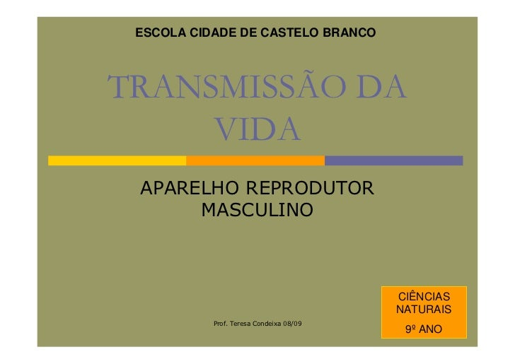 ESCOLA CIDADE DE CASTELO BRANCO    TRANSMISSÃO DA      VIDA  APARELHO REPRODUTOR       MASCULINO                          ...