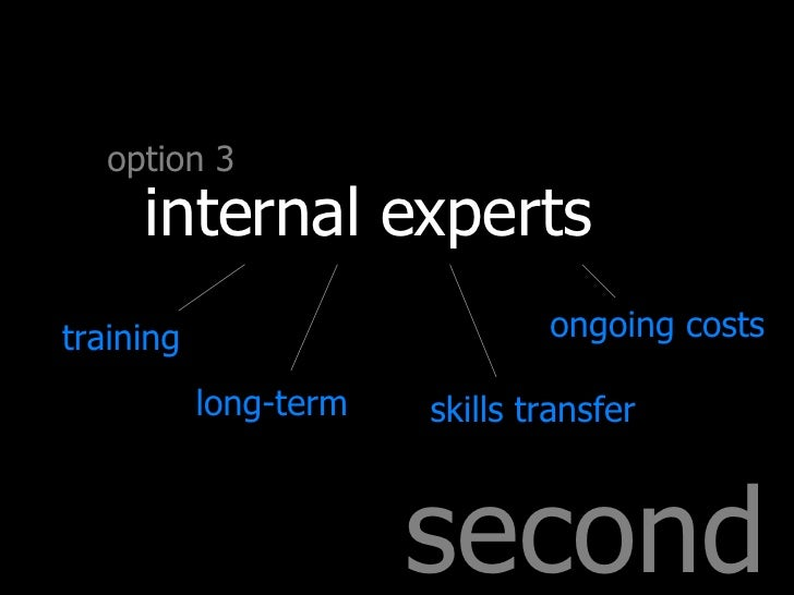 second option 3 internal experts training long-term skills transfer ongoing costs
