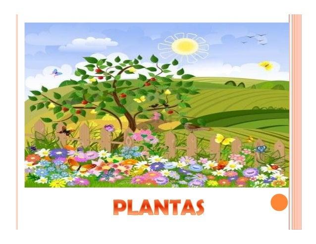 Catequesis Primera Unia N El Credo Para Colorear Espagnol: LA CREACIÓN DEL MUNDO PARA NIÑOS