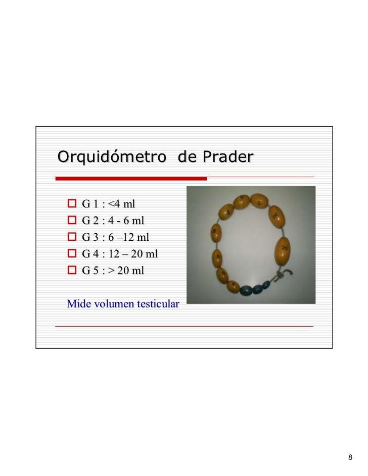 Orquidómetro de Prader      G 1 : <4 ml     G 2 : 4 - 6 ml     G 3 : 6 –12 ml     G 4 : 12 – 20 ml     G 5 : > 20 ml   Mid...