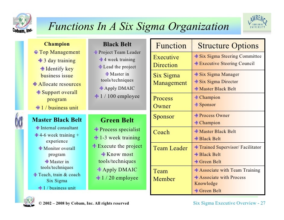 six sigma executive overview rh slideshare net Six Sigma Process Diagrams Activity Network Diagram