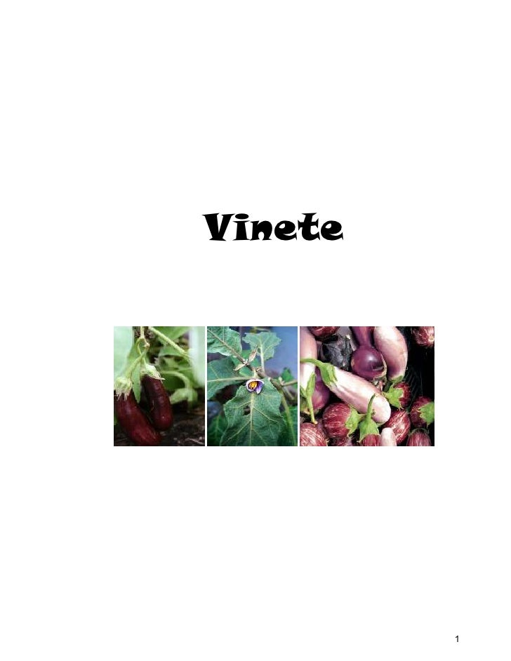 Vinete         1