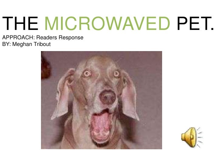 THE MICROWAVED PET.<br />APPROACH: Readers Response<br />BY: Meghan Tribout<br />