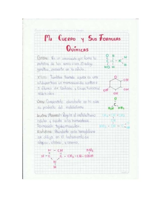 TRABAJO Mi cuerpo y sus funciones quimica Slide 2