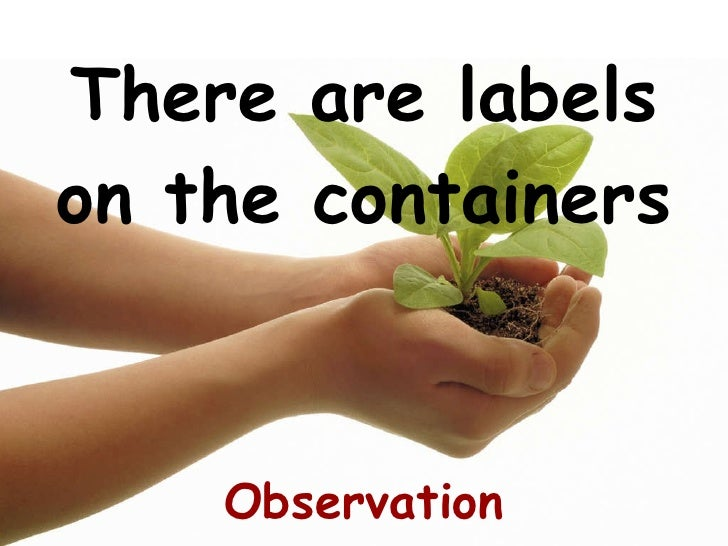 There are labels on the containers Observation