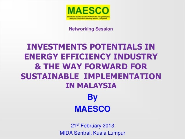 Networking Session  INVESTMENTS POTENTIALS IN ENERGY EFFICIENCY INDUSTRY    & THE WAY FORWARD FORSUSTAINABLE IMPLEMENTATIO...