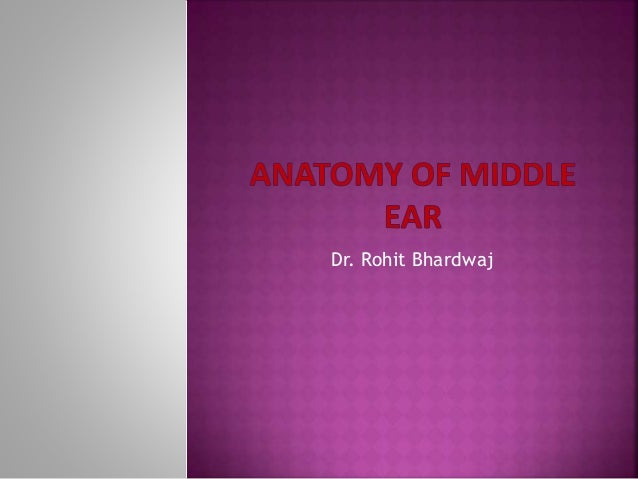 Middle ear by drhit dr rohit bhardwaj ccuart Choice Image