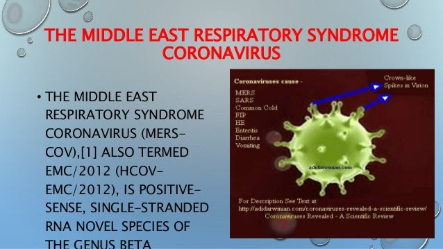 middle east respiratory syndrome coronavirus about Journal of virology: middle east respiratory syndrome coronavirus (mers-cov) announcement of the coronavirus study group journal of the american medical association news: french researchers: for now, middle eastern coronavirus not likely to cause a pandemic.