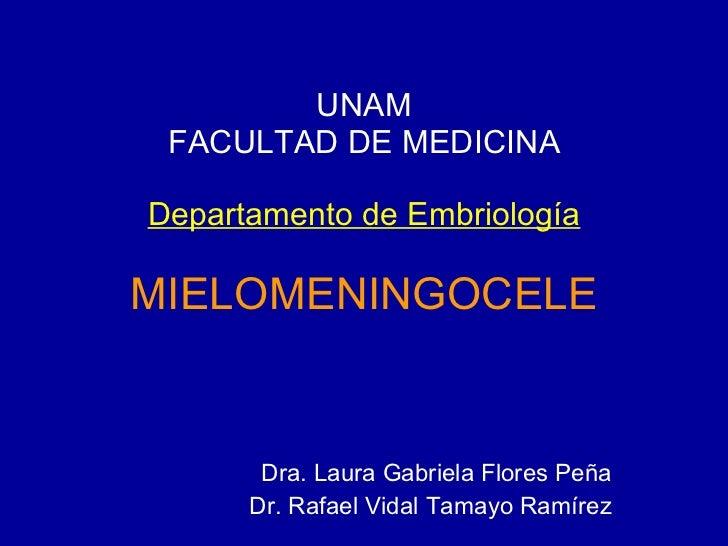 UNAM FACULTAD DE MEDICINA Departamento de Embriología MIELOMENINGOCELE Dra. Laura Gabriela Flores Peña Dr. Rafael Vidal Ta...