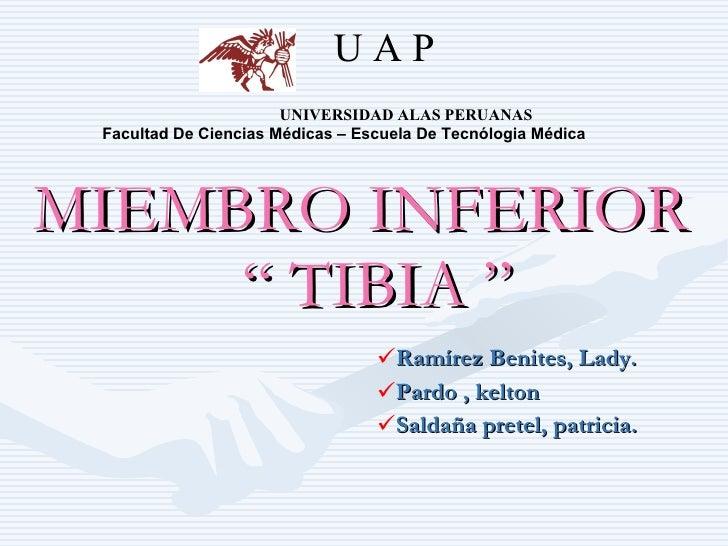 UAP                        UNIVERSIDAD ALAS PERUANAS  Facultad De Ciencias Médicas – Escuela De Tecnólogia Médica     MIEM...