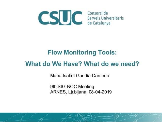 Maria Isabel Gandía Carriedo 9th SIG-NOC Meeting ARNES, Ljubljana, 08-04-2019 Flow Monitoring Tools: What do We Have? What...