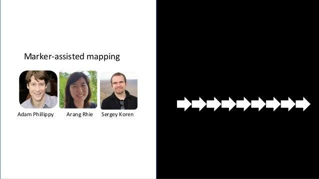 @NanoporeConf   #NanoporeConf Create a scaffold of unique, or single copy k-mers genome-wide Marker-assisted mapping Adam ...