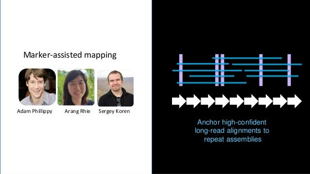 28 Confident mapping of long reads using a single-copy k-mer strategy Identify and mark all sites of unique anchors across...