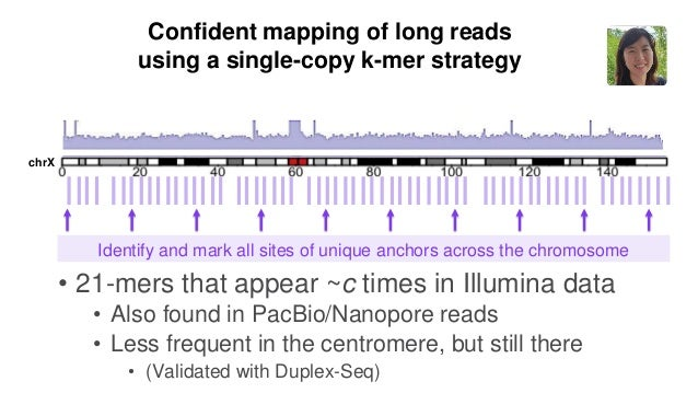 29 Confident mapping of long reads using a single-copy k-mer strategy Filter long read alignments: retaining those with un...