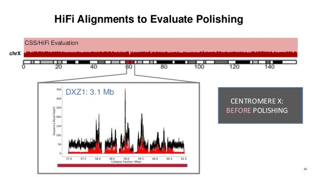 35 CSS/HiFi Evaluation chrX HiFi Alignments to Evaluate Polishing CENTROMERE X: AFTER POLISHING NOTE: Underlying satellite...