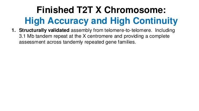 1. Structurally validated assembly from telomere-to-telomere. Including 3.1 Mb tandem repeat at the X centromere and provi...
