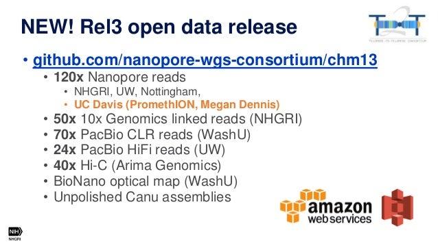 Additional ultra-long ONT data from Glennis Logsdon (UW) Read length Coverage Percent of data >50 kbp 12X 86% >100 kbp 9.1...