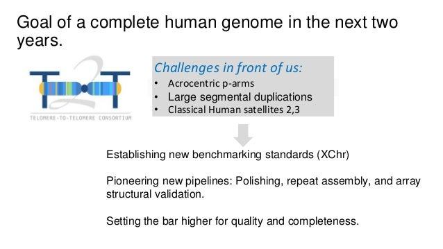 Telomere-to-telomere assembly of a complete human chromosomes
