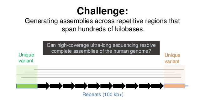 Challenge: Generating assemblies across repetitive regions that span hundreds of kilobases. Repeats (100 kb+) Unique varia...