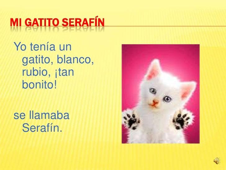 Mi Gatito Serafín<br />Yo tenía un gatito, blanco, rubio, ¡tan bonito!<br />se llamaba Serafín.<br /><br /><br /><br />