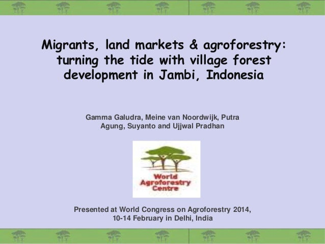 Migrants, land markets & agroforestry: turning the tide with village forest development in Jambi, Indonesia  Gamma Galudra...