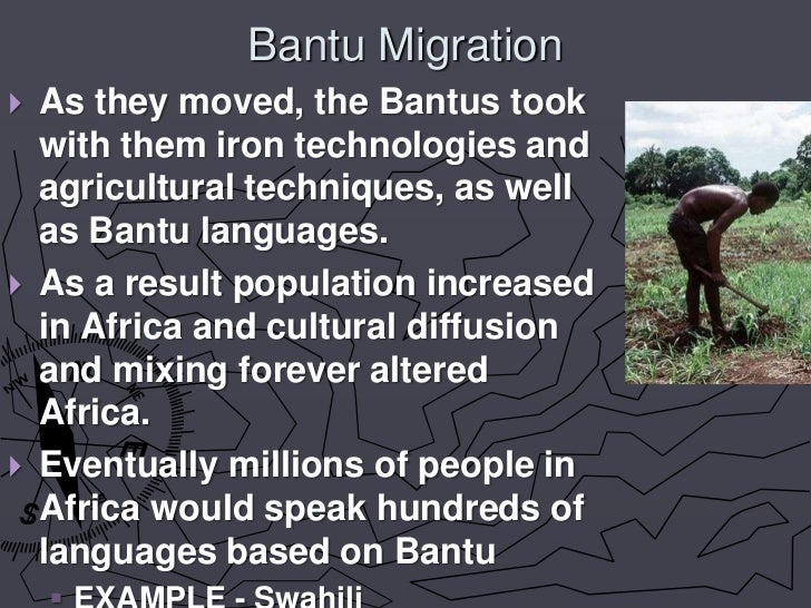 tracking the migration of humans through the languages they speak Language and migration: neither of them knew any english although both had learned several other language they took part in an they fell in love through.