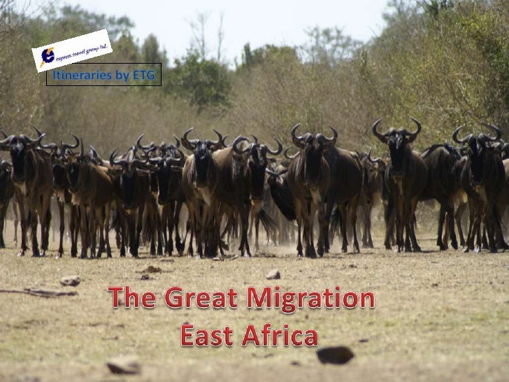 Itineraries by ETG<br />The Great Migration <br /> East Africa<br />