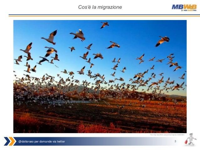 @dottorseo per domande via twitter 3 Cos'è la migrazione Foto: http://www.flickr.com/photos/fortphoto/344900665/