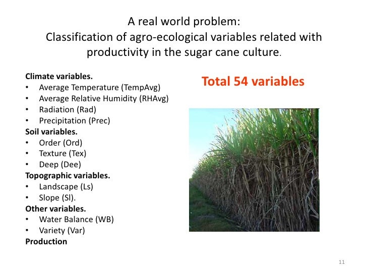 A real world problem:     Classification of agro-ecological variables related with              productivity in the sugar ...