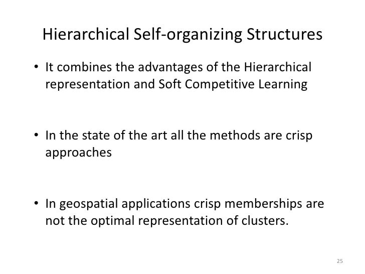 Hierarchical Self-organizing Structures• It combines the advantages of the Hierarchical  representation and Soft Competiti...