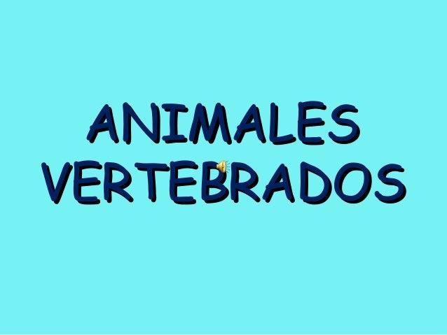 ANIMALESANIMALES VERTEBRADOSVERTEBRADOS