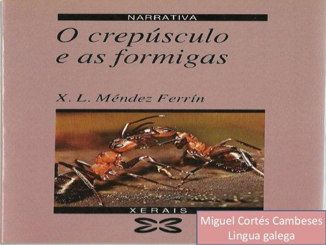 Miguel Cortés Cambeses  Lingua galega