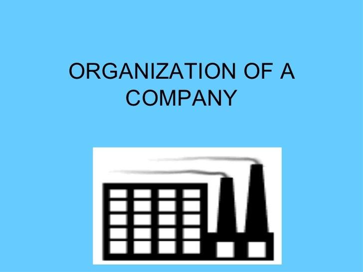 ORGANIZATION OF A COMPANY