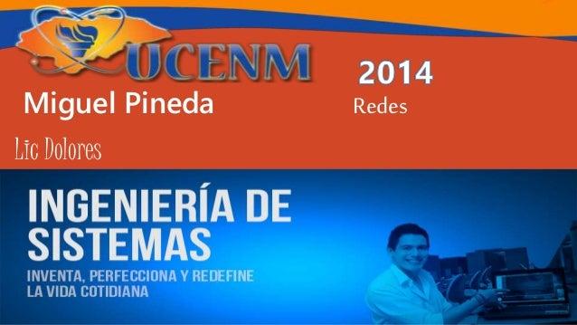 Miguel Pineda Redes Lic Dolores