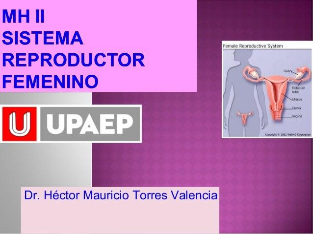 Dr. Héctor Mauricio Torres Valencia