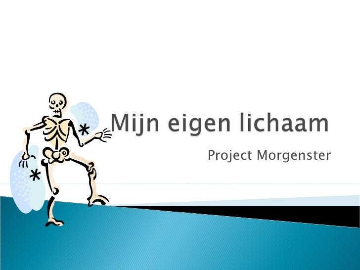 Project Morgenster