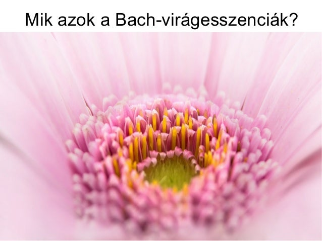 Mik azok a Bach-virágesszenciák?