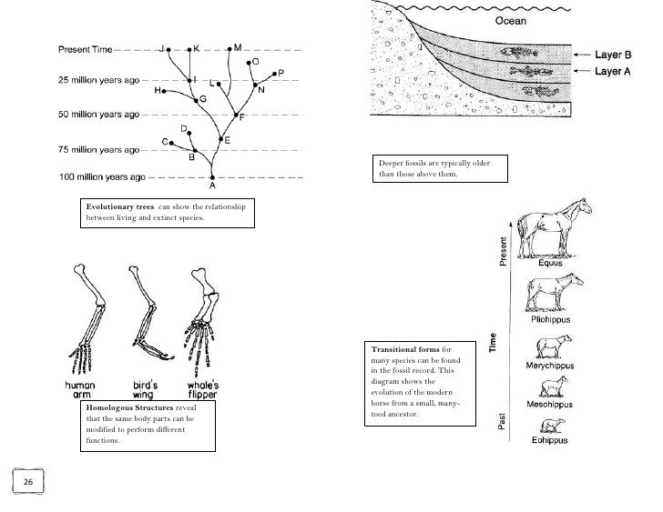 Biology regents review packet with blanks waste product of aerobic respiration ccuart Choice Image