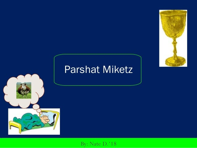 Parshat Miketz   By: Nate D. '18
