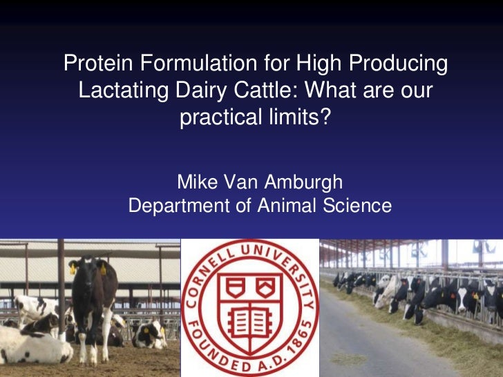 Protein Formulation for High Producing Lactating Dairy Cattle: What are our practical limits?<br />Mike Van Amburgh<br />D...