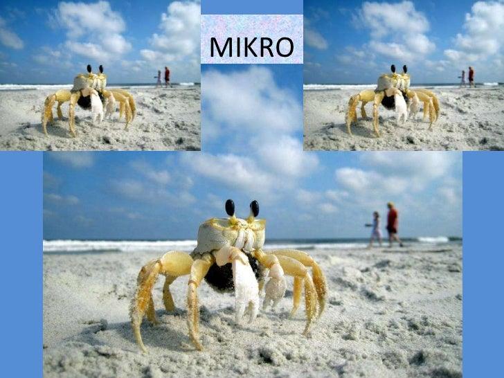 MIKRO<br />
